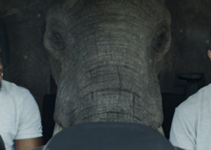 Elephant In The Transit Ford Campaign Main