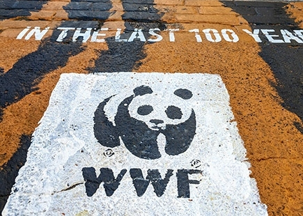 Wwf Stop Wildlife Trafficking5